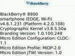 BlackBerry OS 4.6.1.231 for BlackBerry Curve 8900 gets leaked