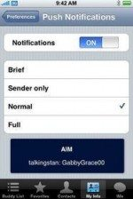 iPhone 3.0 Aim to support push notifications