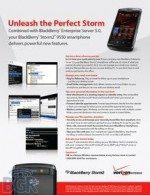 BlackBerry Storm 9550 with BES 5.0 benefits for Verizon