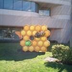 Android Honeycomb Lands at Google HQ: Video