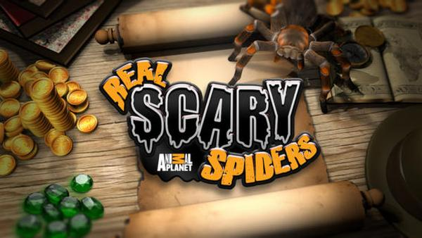 Arachnophobia cure possible via Real Scary Spiders game