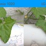 lg-g2-vs-nokia-lumia-1020-camera