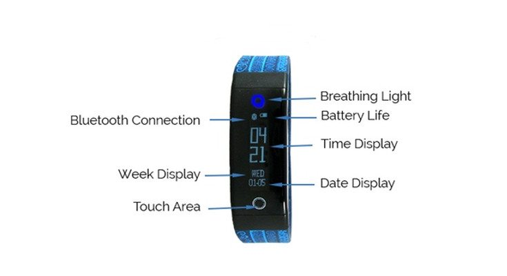 tushi pal fitness tracker
